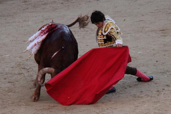 Castella et le toro Jabatillo, prix de la rencontre